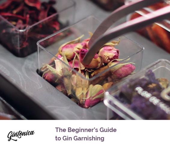 Blog Beginners Guide Gin Garnishing